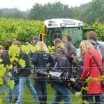 Medienandrang bei der ersten Weinlese für den Schleswig-Holstein-Wein (Grebin, 2010)